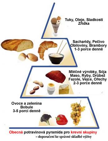 Pyramida pro krevní skupiny - obecné dělení